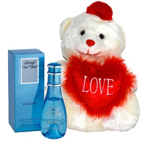 Cool-Water-Perfume-and-Teddy-Bear