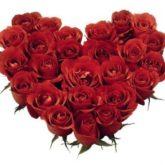 red-roses-heart.jpg