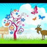 Eid Ul Azha Gifts