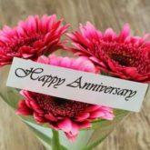 Anniversary & Wedding